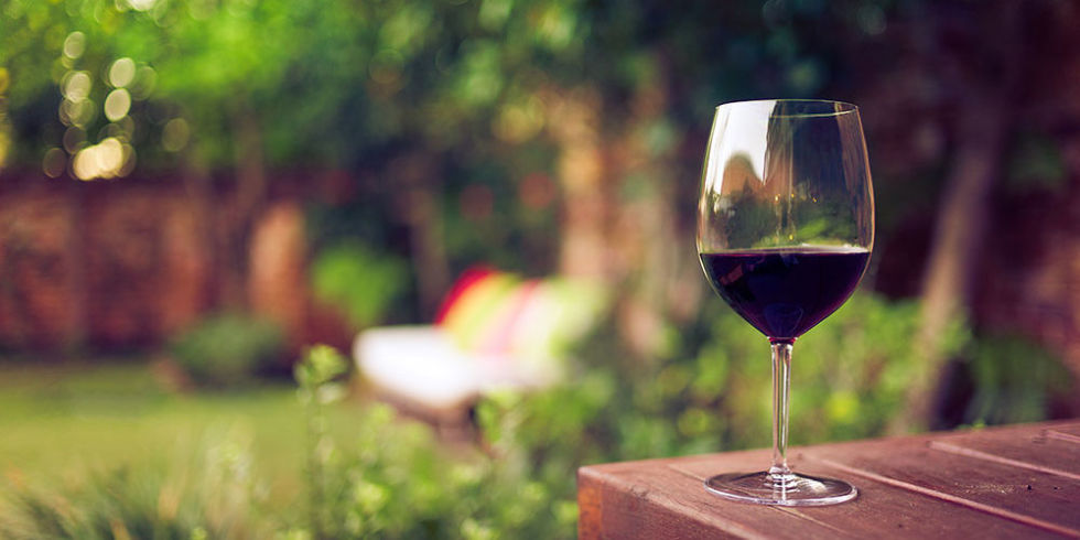 red wine in the garden.jpg