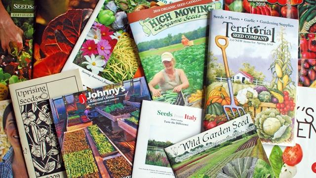 seed-catalogs.jpg