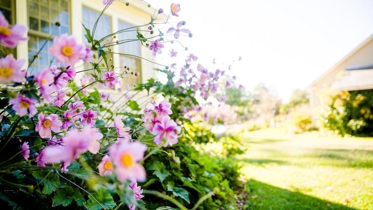 Home-garden-safety-1.jpg