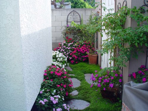 Small Space Gardening - Where There\'s A Will, There\'s A Way ...