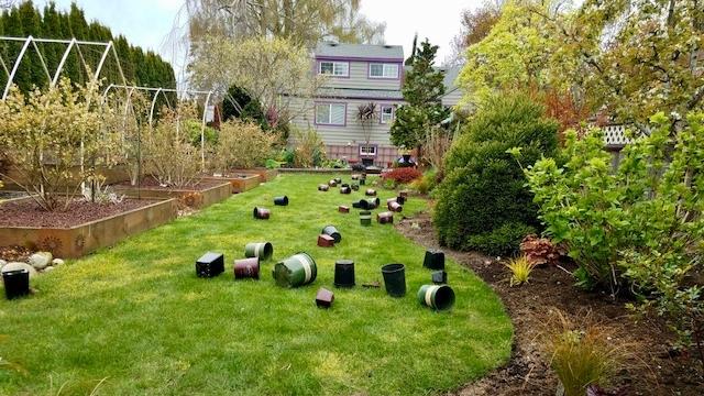 Steve's yard - planting.jpg