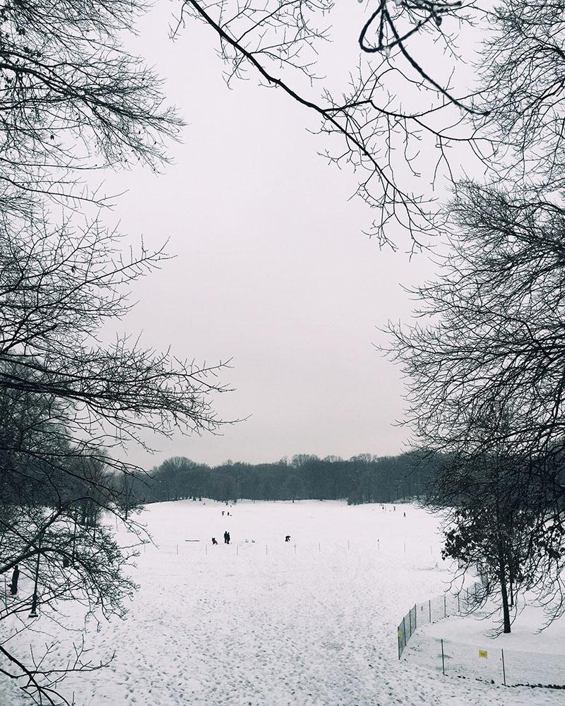 snow-title.jpg