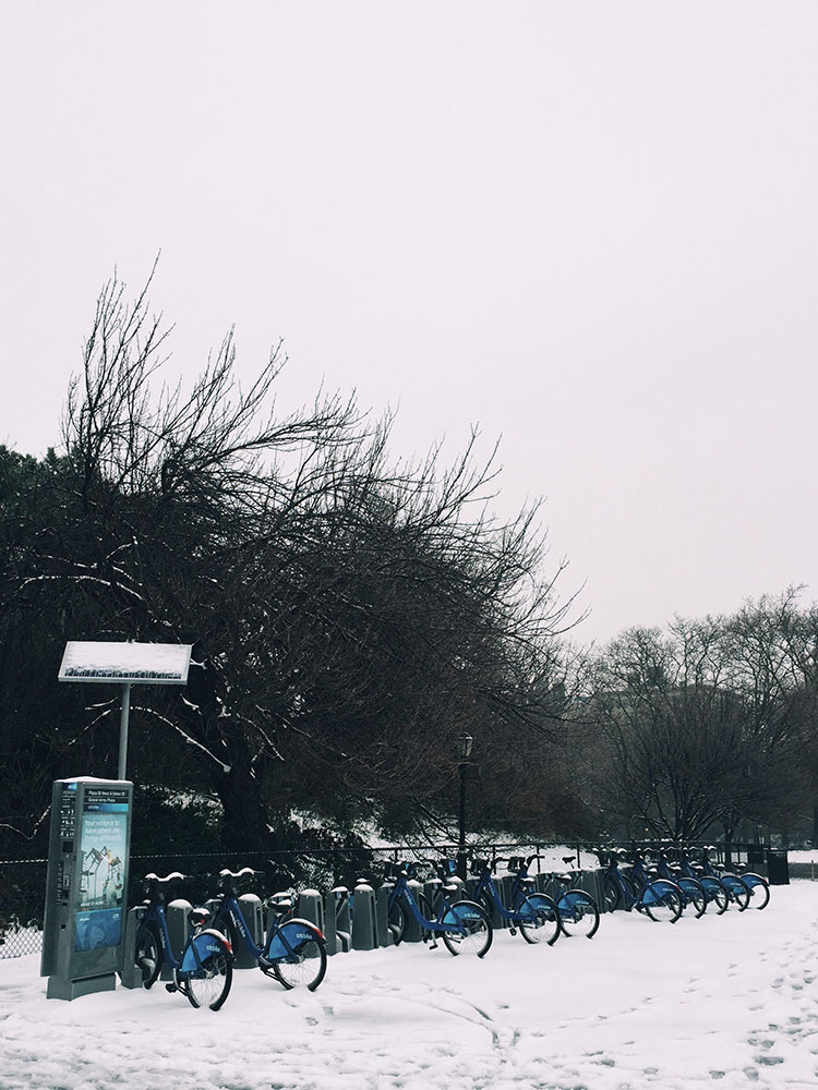 snow-citibike(tall).jpg