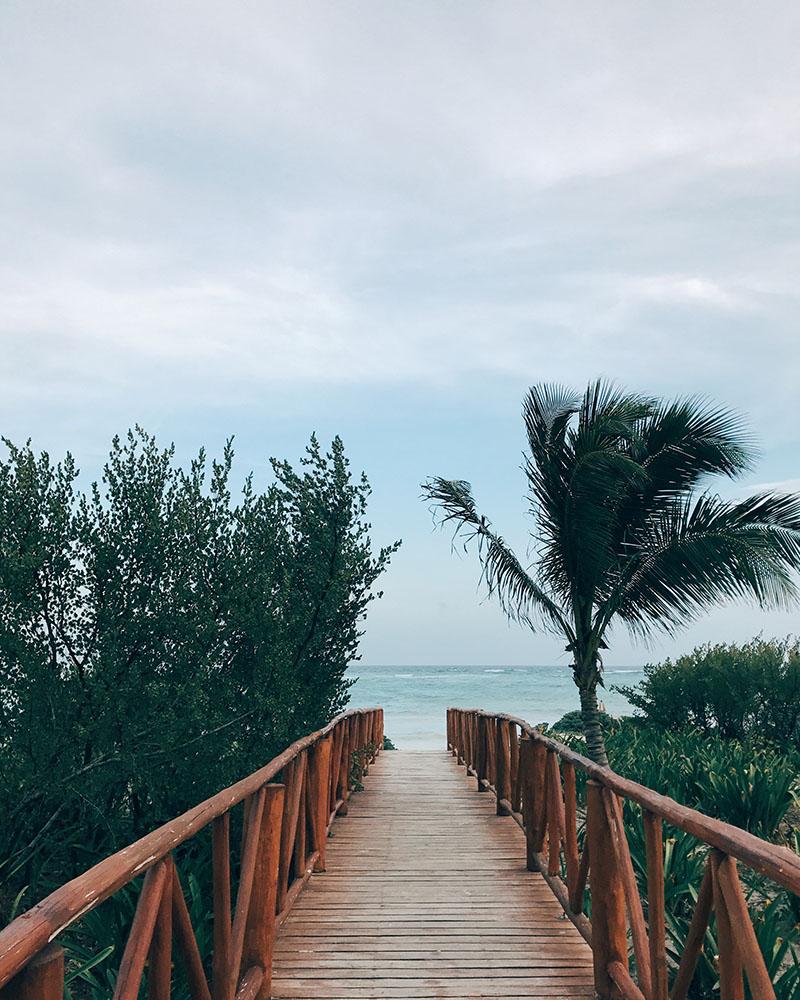beach(t)(02).jpg