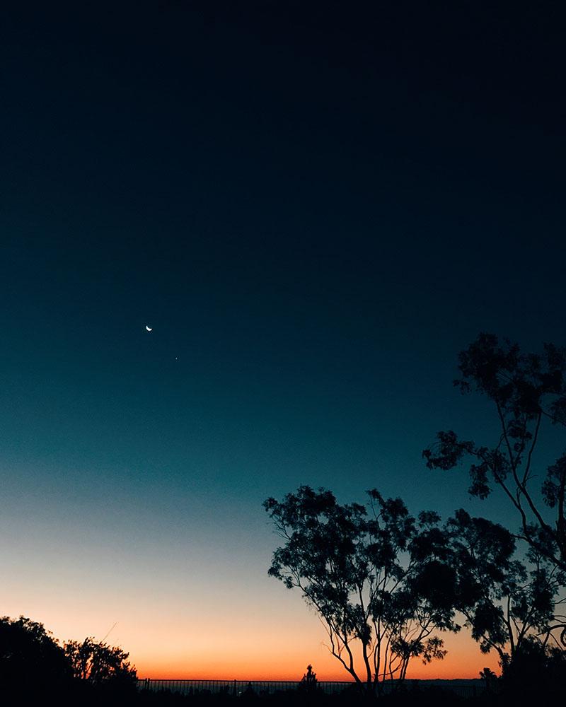 dawn(t).jpg