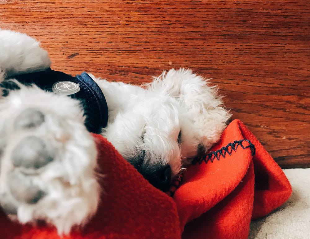 SOM-SLEEPING-07.jpg