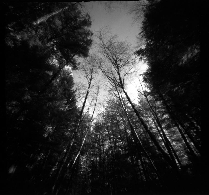 Zero Image 6x6 Pinhole Camera with Fomapan 100 speed film. Three minute exposure.