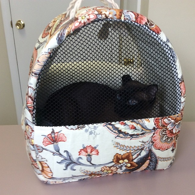 #cat #carrier #comfort #craft #handmade #veterinary #feline #pet