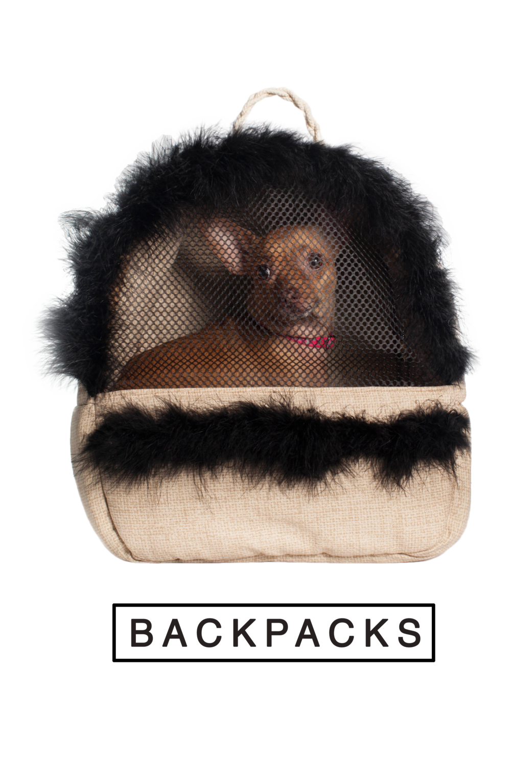 backpacks_homepage.png