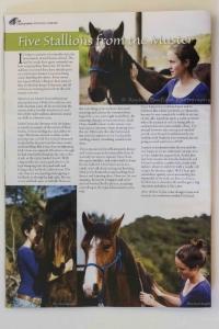 Kaimanawa Heritage Horses magazine, 2012