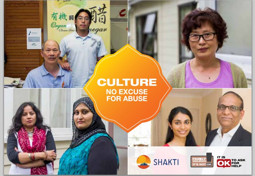 Culture: No excuse for Abuse book - Shakti