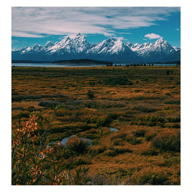 Always blown away by the scenery here. Had a wonderful week at the Jackson Hole Wildlife Film Festival & Summit. @jacksonholewild #jacksonhole #mountains #getoutside