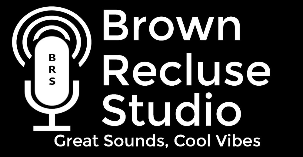 Brown Recluse Studio