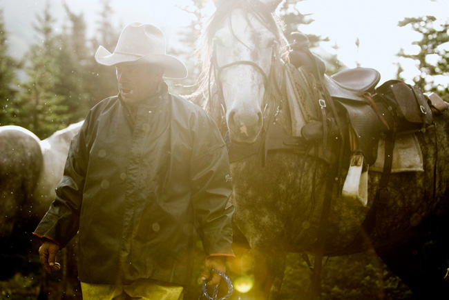 Outfitter leads horse on hunting trip, British Columbia, 2010