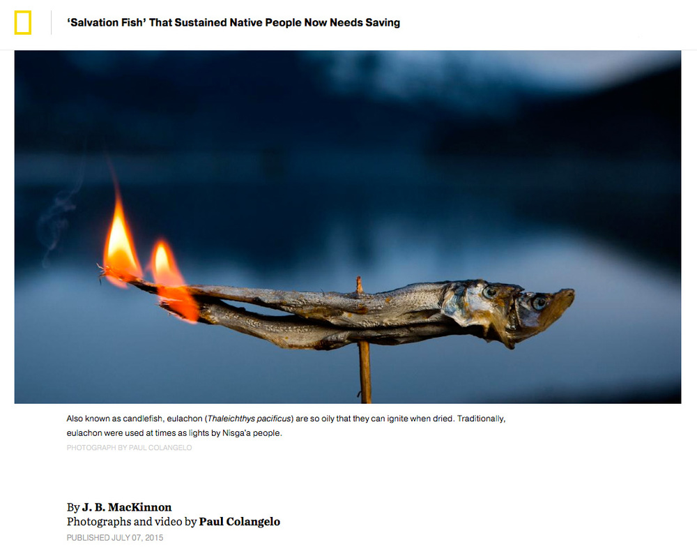 Colangelo_National_Geographic_Salvation_Fish