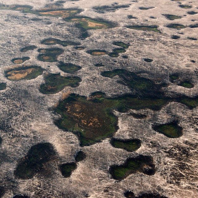 Lunar landscape left behind by wildfire in the #boreal