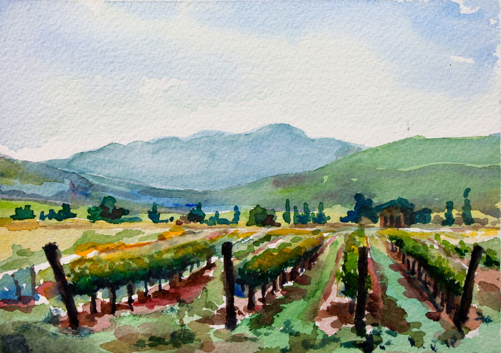 Tuscan Vineyard,  5x7, watercolor