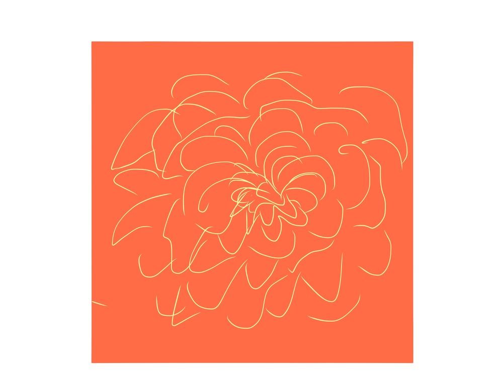 Image-1 (2).jpg