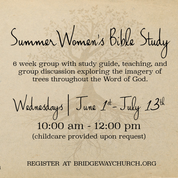 Summer Women Bible Study.jpg