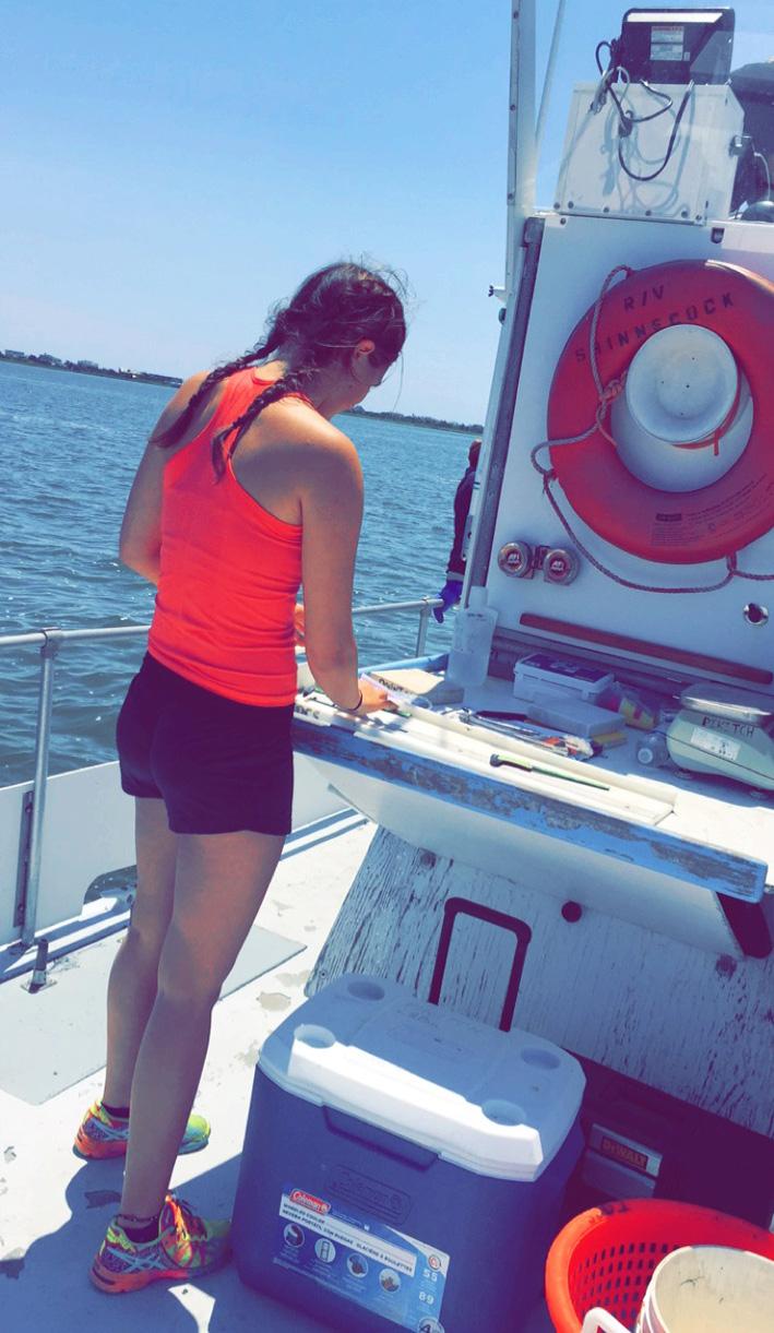 DiGiacomo-Rountos-trawl.JPG