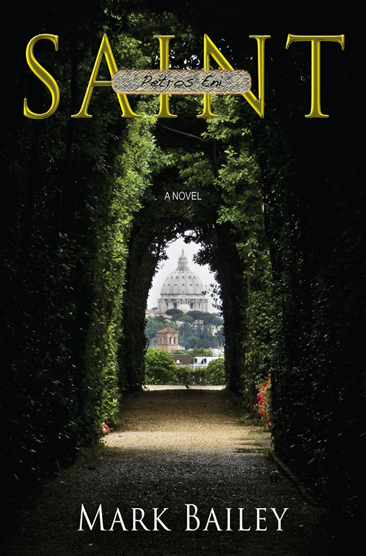 SAINT - The novel of intrigue - e-Book edition