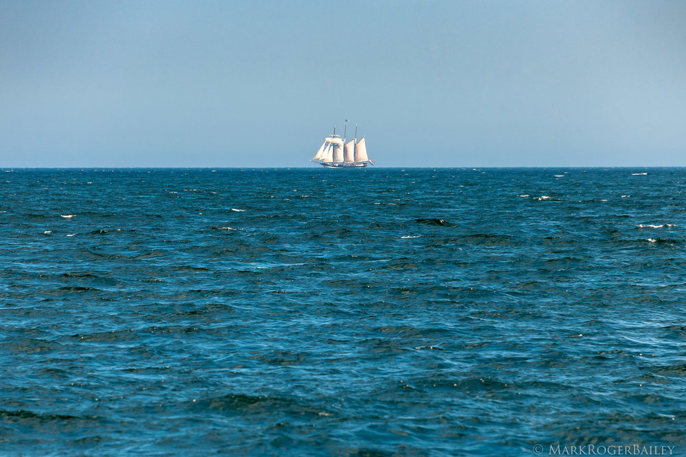 Three-masted Topsail Schooner  Oosterschelde  NL   (2018) by Mark Roger Bailey