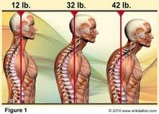 posture image.jpg