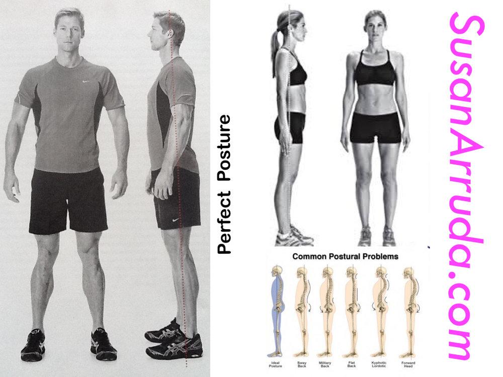 SusanArruda posture example.jpg