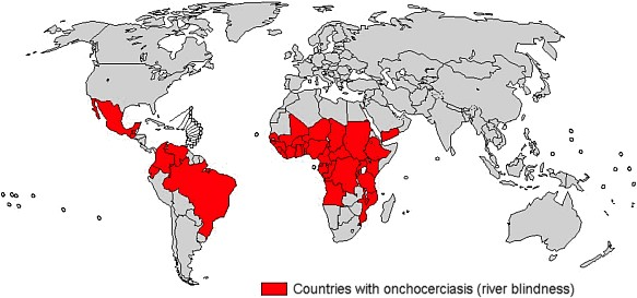 Onchocerciasis and other neglected tropical diseases (NTDs) are generally classified as a group of medically disparate diseases afflicting the poorest people of the world's developing nations and resulting in acute illness, long-term disability and early death. Image Reference: CDC