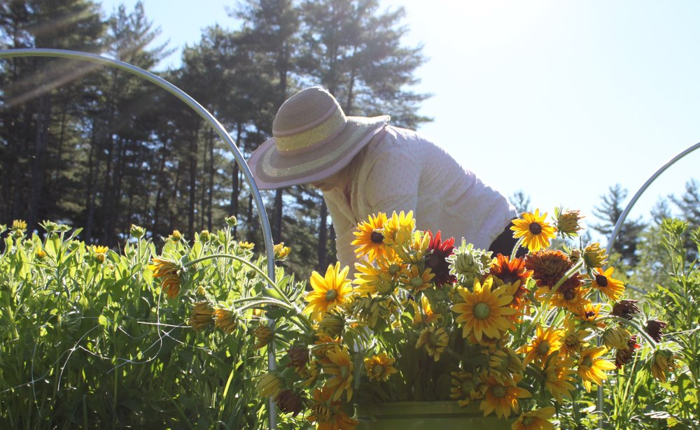 Vermont flower farmer