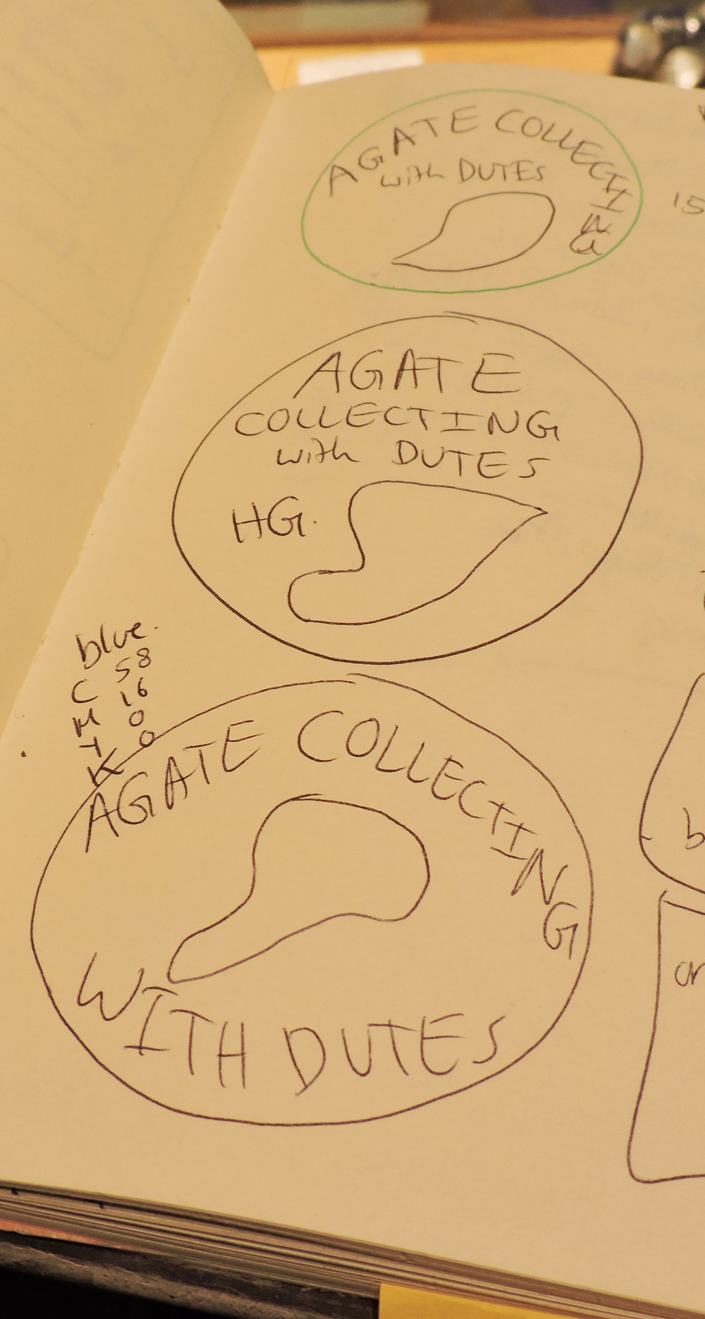 Working on the early drafts of Agate Collecting with Dutes started in May 2016.
