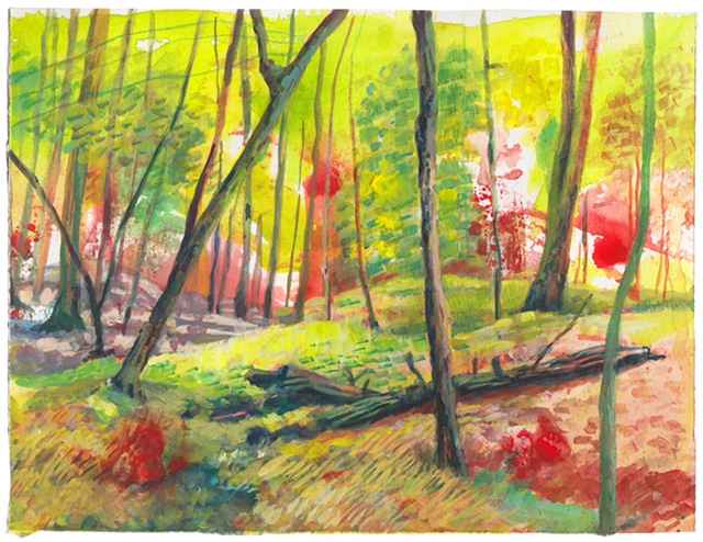 """Blotched Forest"" 2018 