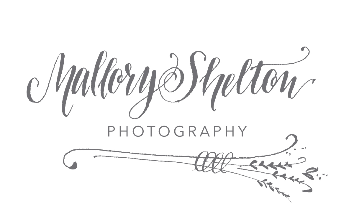 Mallory Shelton Photography | Dallas-Fort Worth Lifestyle Newborn and Portrait Photographer