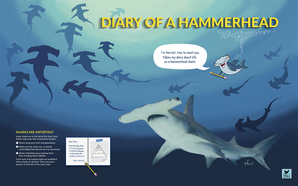 Hammerhead_Engagment_Panel_Paly_Foundation_Web.jpg