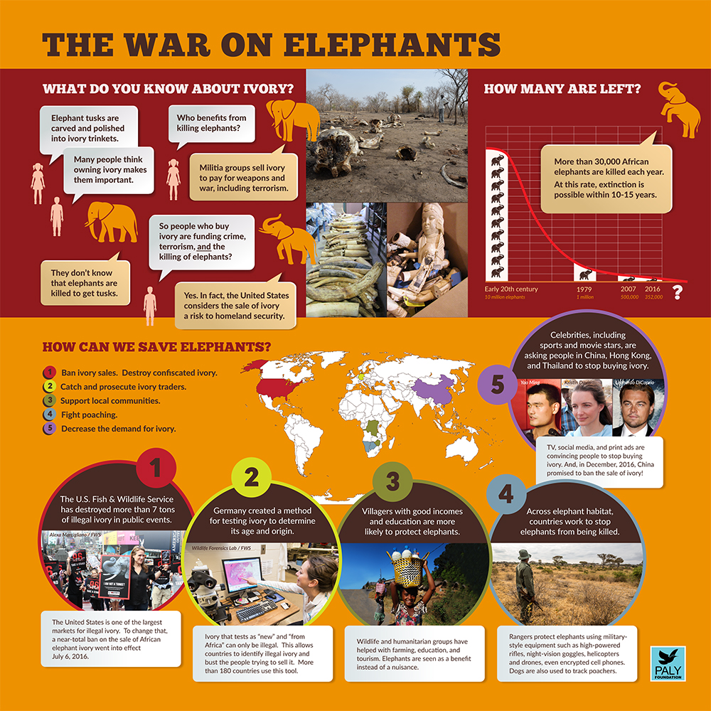 Elephants_Dangers_and_Solutions_Paly_Foundation_Web.jpg