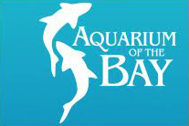 Aquarium of the Bay.jpg