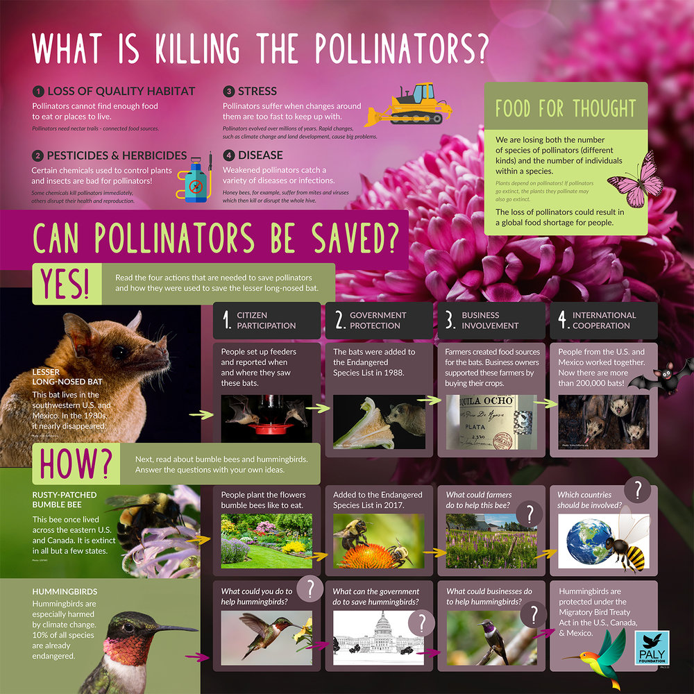 Pollinators_Dangers_and_Solutions_Paly_Foundation_Web.jpg