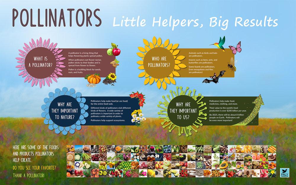 Pollinators_Engagement_Panel_Paly_Foundation_Web.jpg
