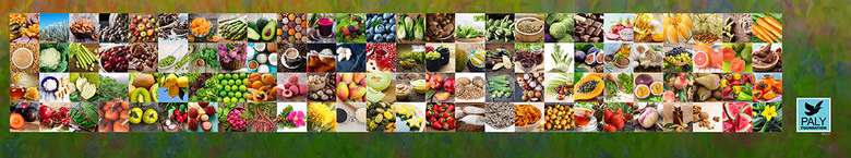 Pollinator_foods_Paly_Foundation.png