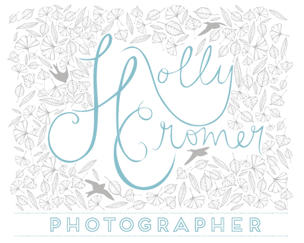 Blacksburg, Virginia Wedding Photographer - Holly Cromer