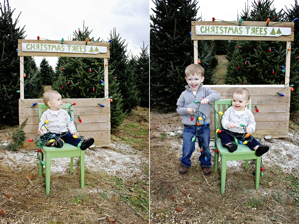 christmas-tree-farm-photos-blacksburg-photographer_0007.jpg