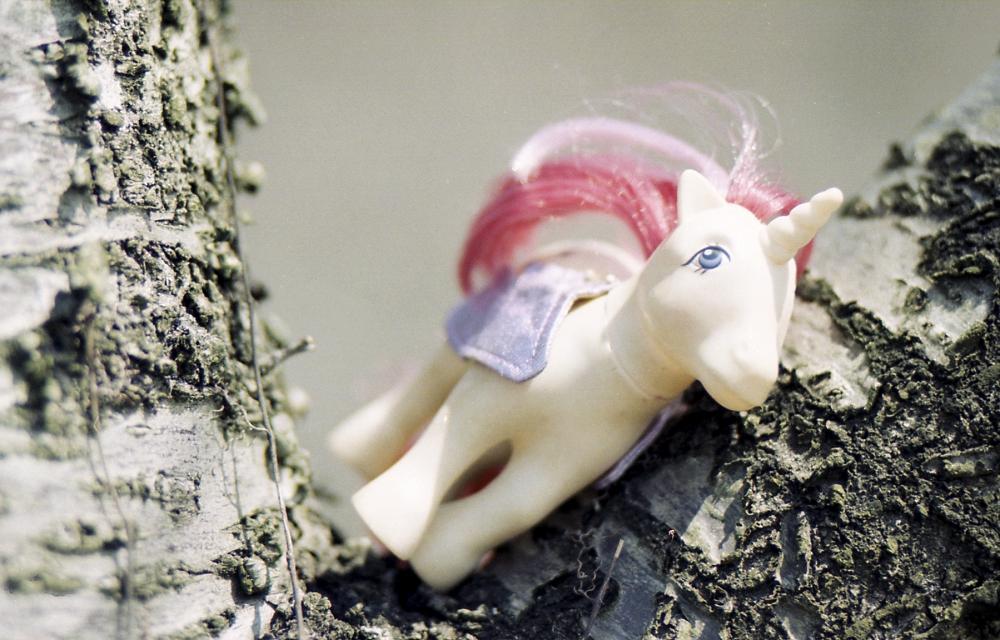 cherry-orchard-elopement-photos_0003.jpg