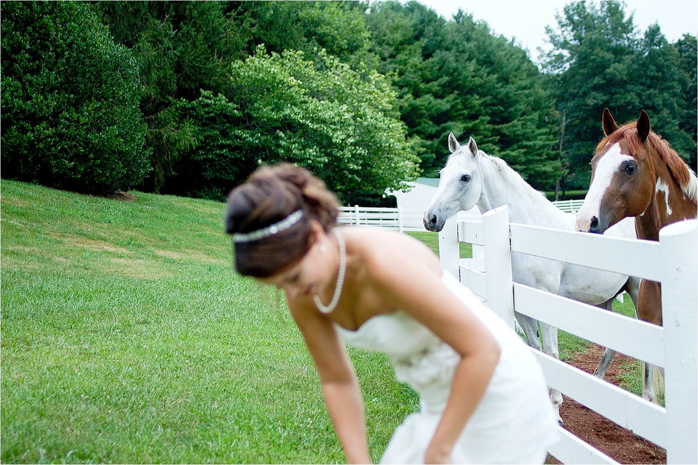Horse-Farm-Bridal-Portraits_0015.jpg