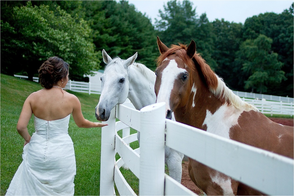 Horse-Farm-Bridal-Portraits_0016.jpg