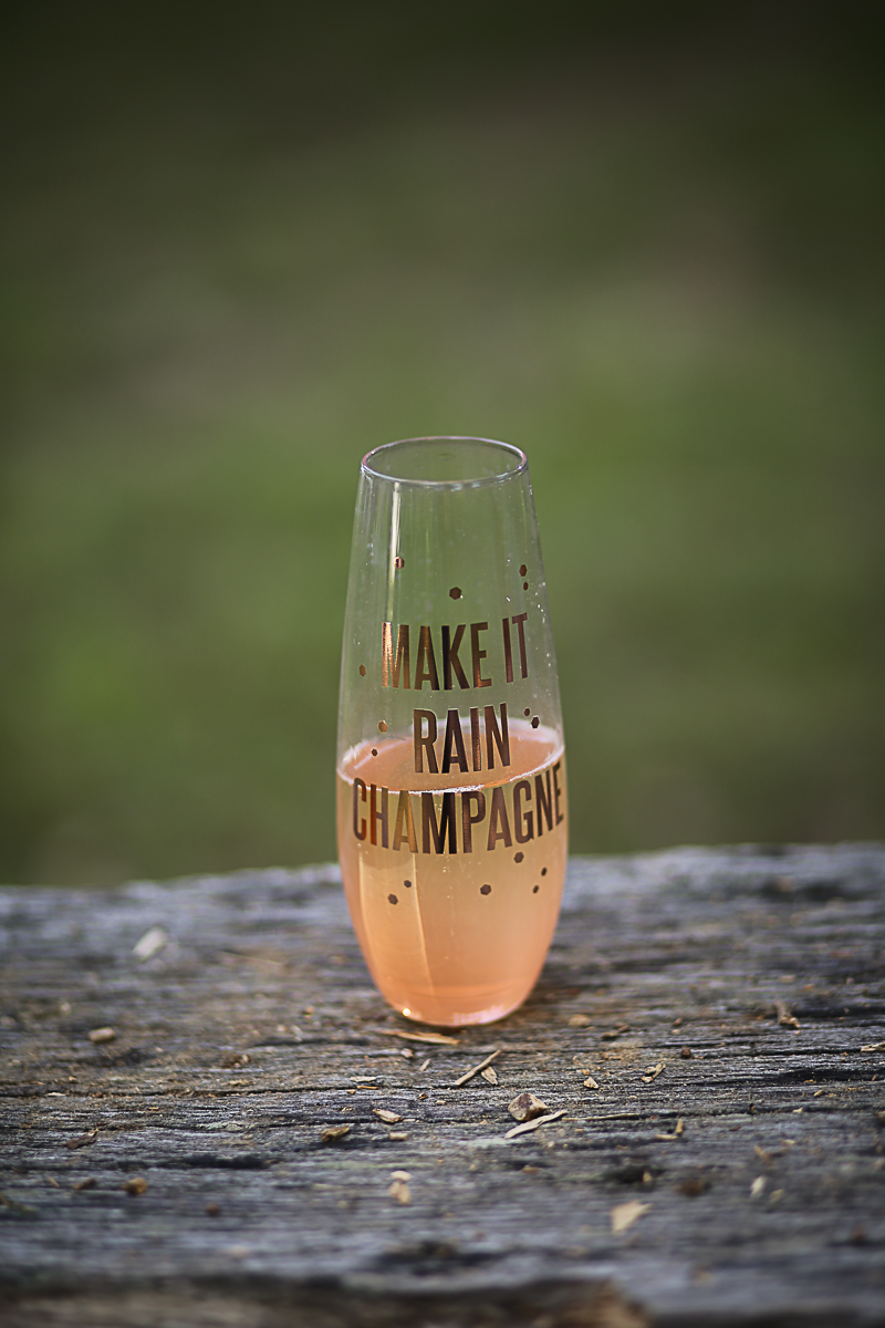 Make it Rain Champagne Stemless Wine Glass Brittany + Michael's Camp Themed Wedding | Virginia Wedding Photographers