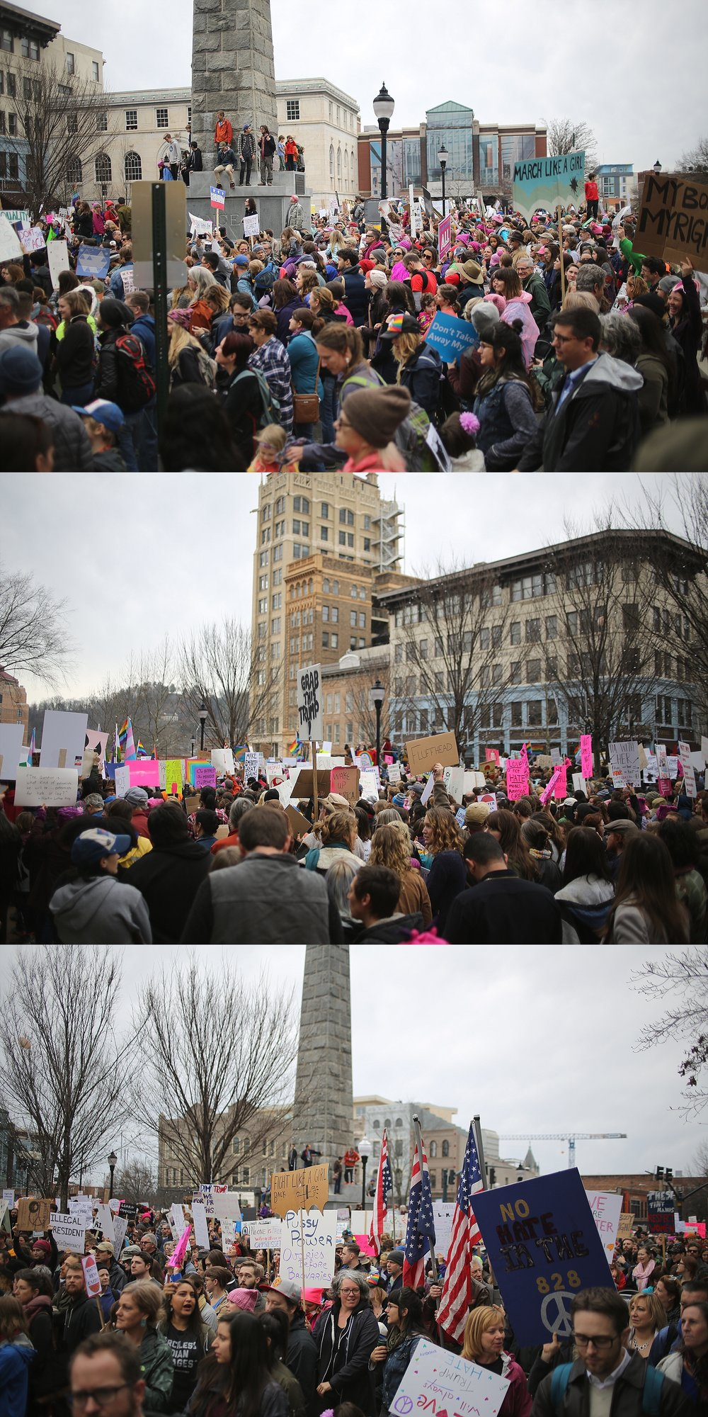 Women's March 2017 in Asheville, North Carolina