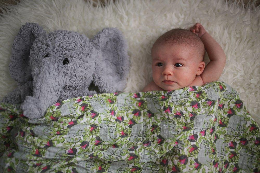 Christiansburg Baby Photographer, Holly Cromer