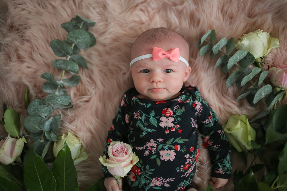 Christiansburg Baby Photographer, Holly Cromer