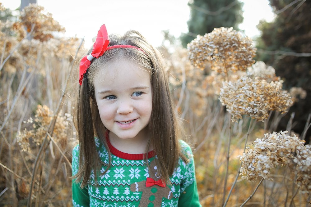 Blacksburg-Christmas-Card-Portrait-Photographer_0002.jpg
