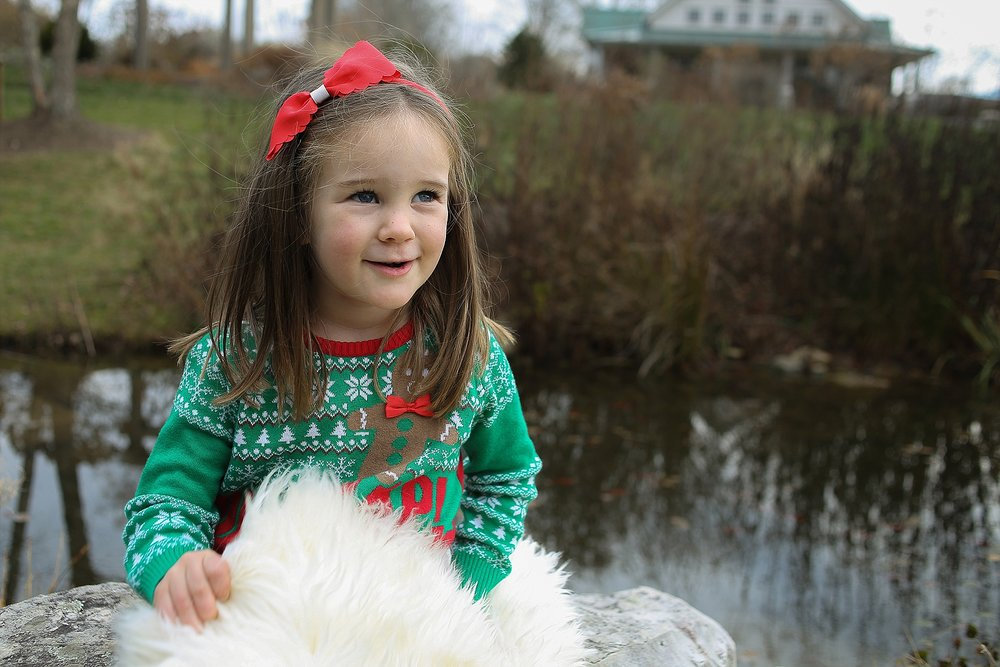 Blacksburg-Christmas-Card-Portrait-Photographer_0019.jpg